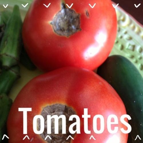 gluten free jacksonville green market produce alvarez farms tomatoes