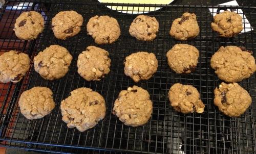 gluten free jacksonville amazing foods oatmeal raisin cookies